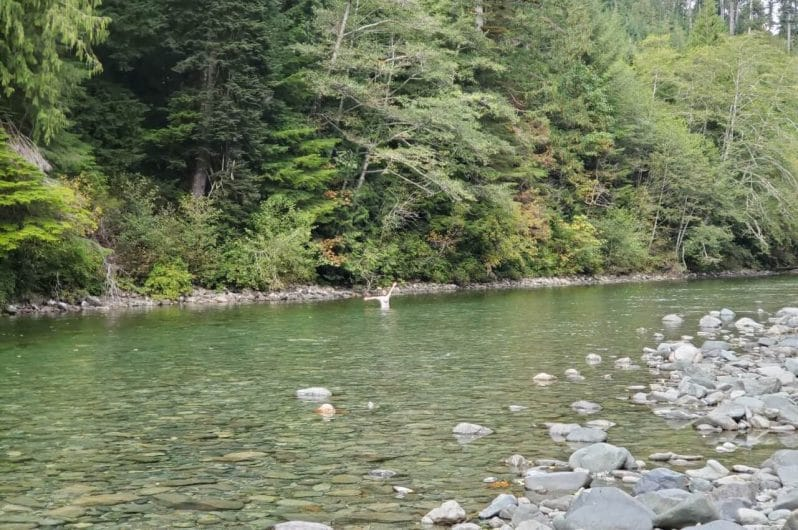 Clayoquot Valley Witness Trail