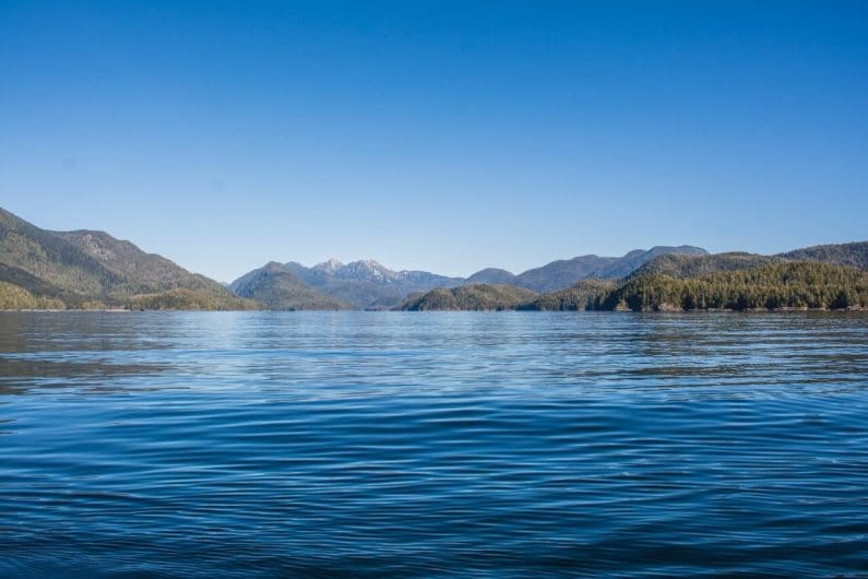 Quait Bay, uno de los mejores lugares que ver en Tofino