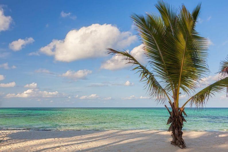 Playa de Pongwe en Zanzibar