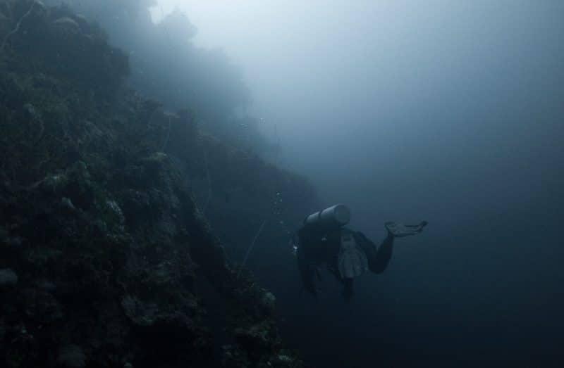 Buceo en los arrecifes de la Columbia Británica