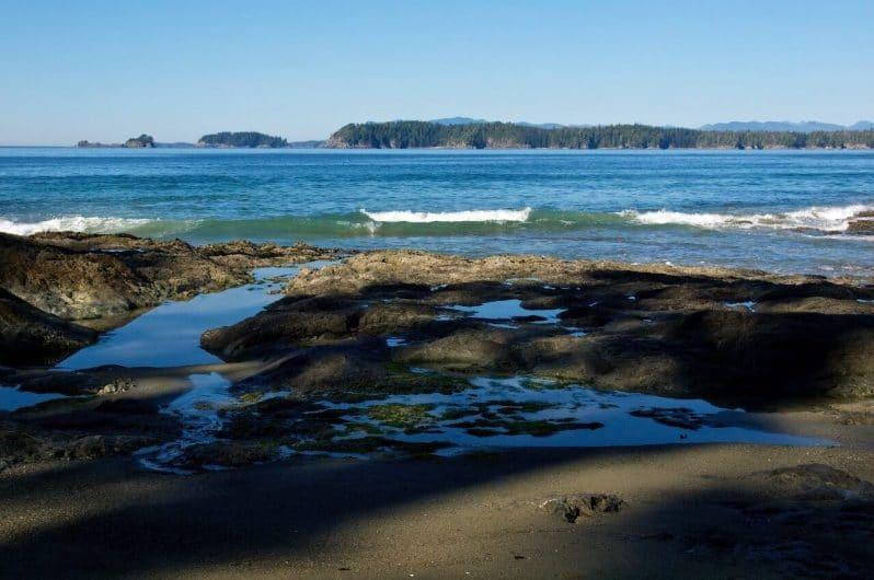 Playa Tapaltos Bamfield